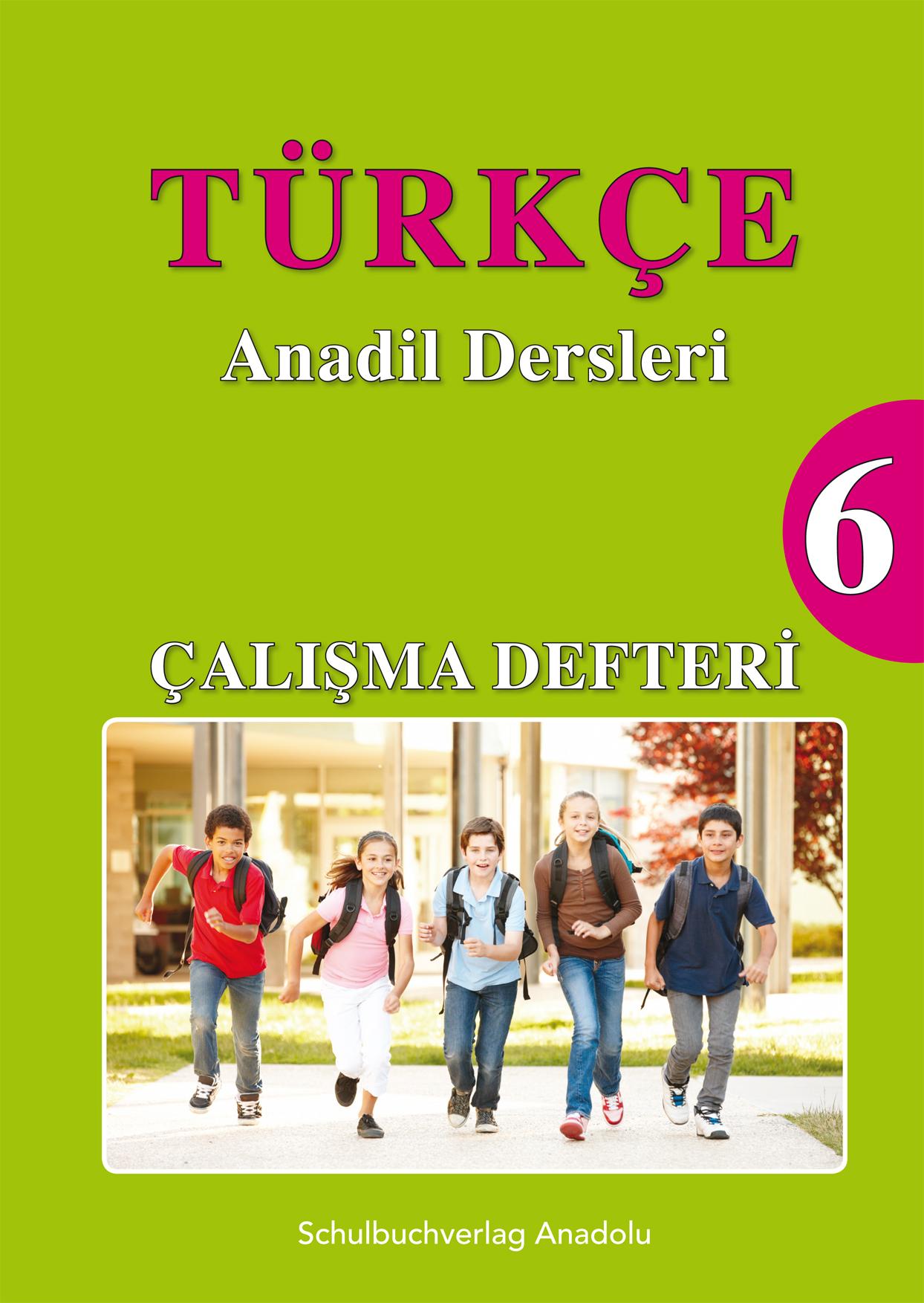 Türkçe Anadil Dersleri 6 Çalışma Defteri